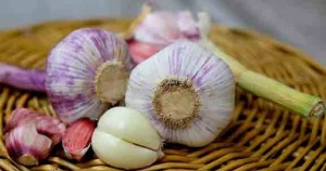 garlic for acne and skin care
