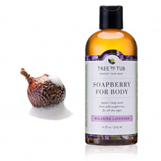 Tree to Tub Soapberry for Body