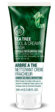 Tea Tree Cool and Creamy Wash For Teens